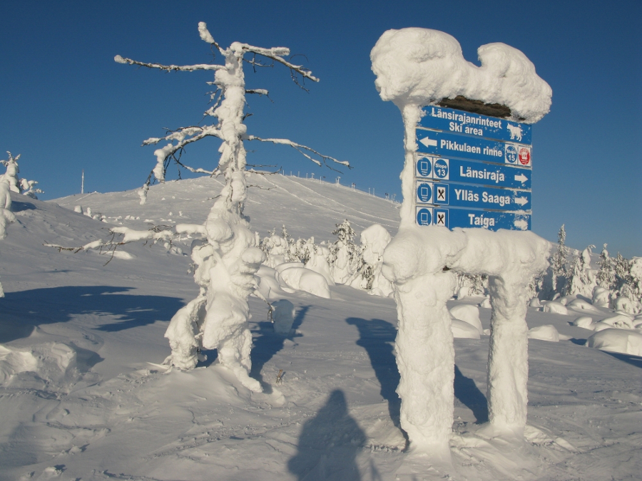 frozen-sign-at-top-of-yllas